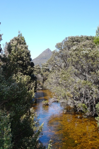 Picture perfect Cradle Mountain
