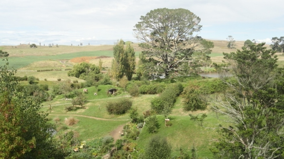 Looking across Hobbiton to the Friendship Tree.