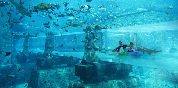 aquadventure