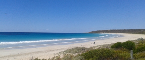 Bunker Bay is one of the gorgeous beaches in the area, many of them toddler friendly.