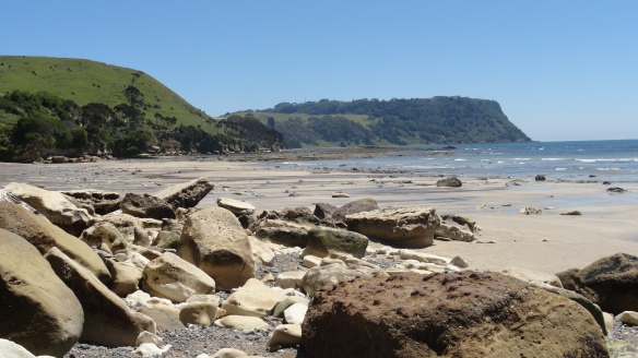 Looking across the beach at Fossil Bluff towards Table Cape.